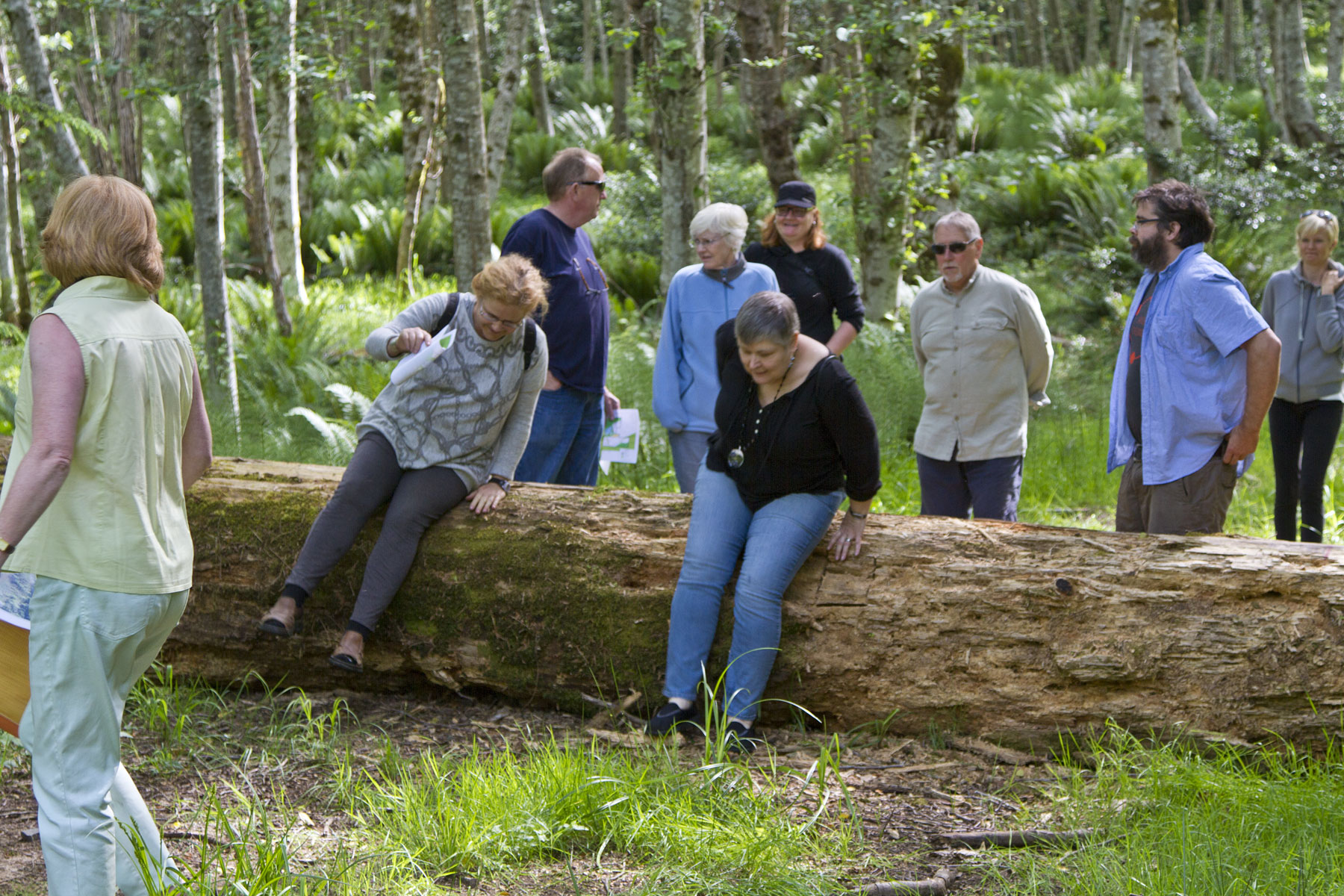 People clambering over a fallen log