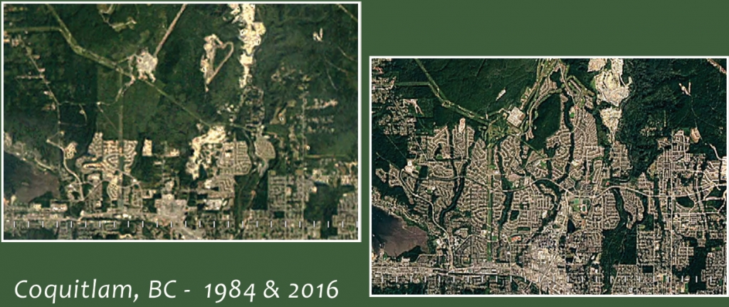 Two aerial views of Coquitlam show large areas of forest in 1984, and massive expansion of city streets replacing forest by 2016